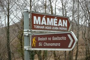 Mamean2001StPat No 006